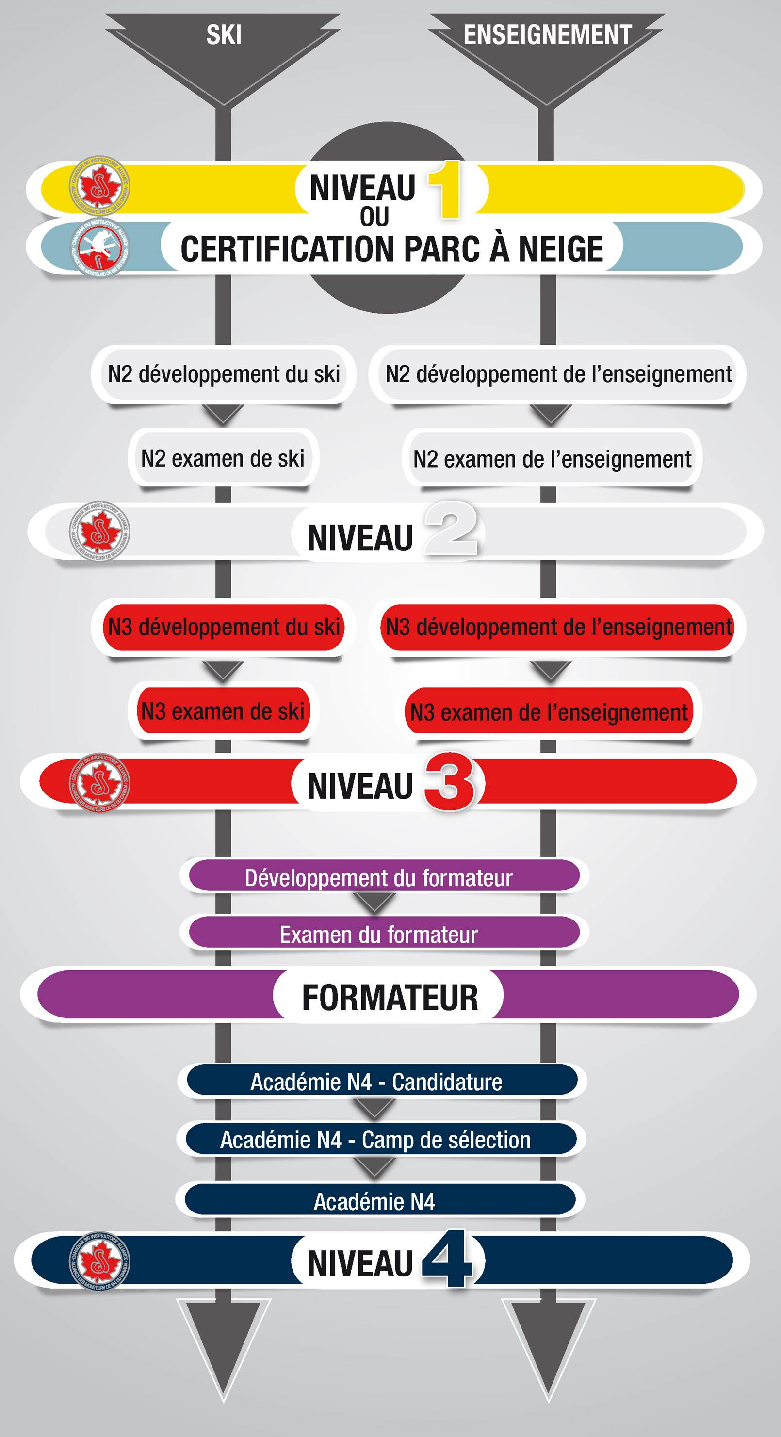 Pathway Graphic final web 2020 2021 FR